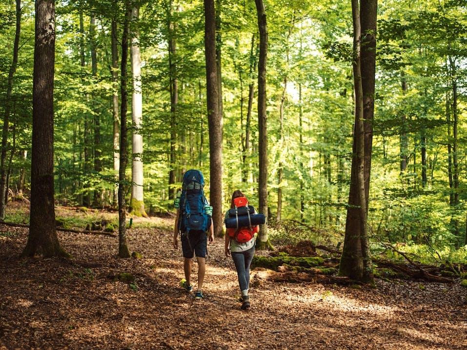 Trekking-Camps-Spessart