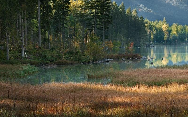 Ein gutes Beispiel: Der Hintersee, BGL, im Oktober. Was will man da auch?