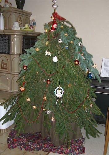Selbstgebauter Tannenbaum