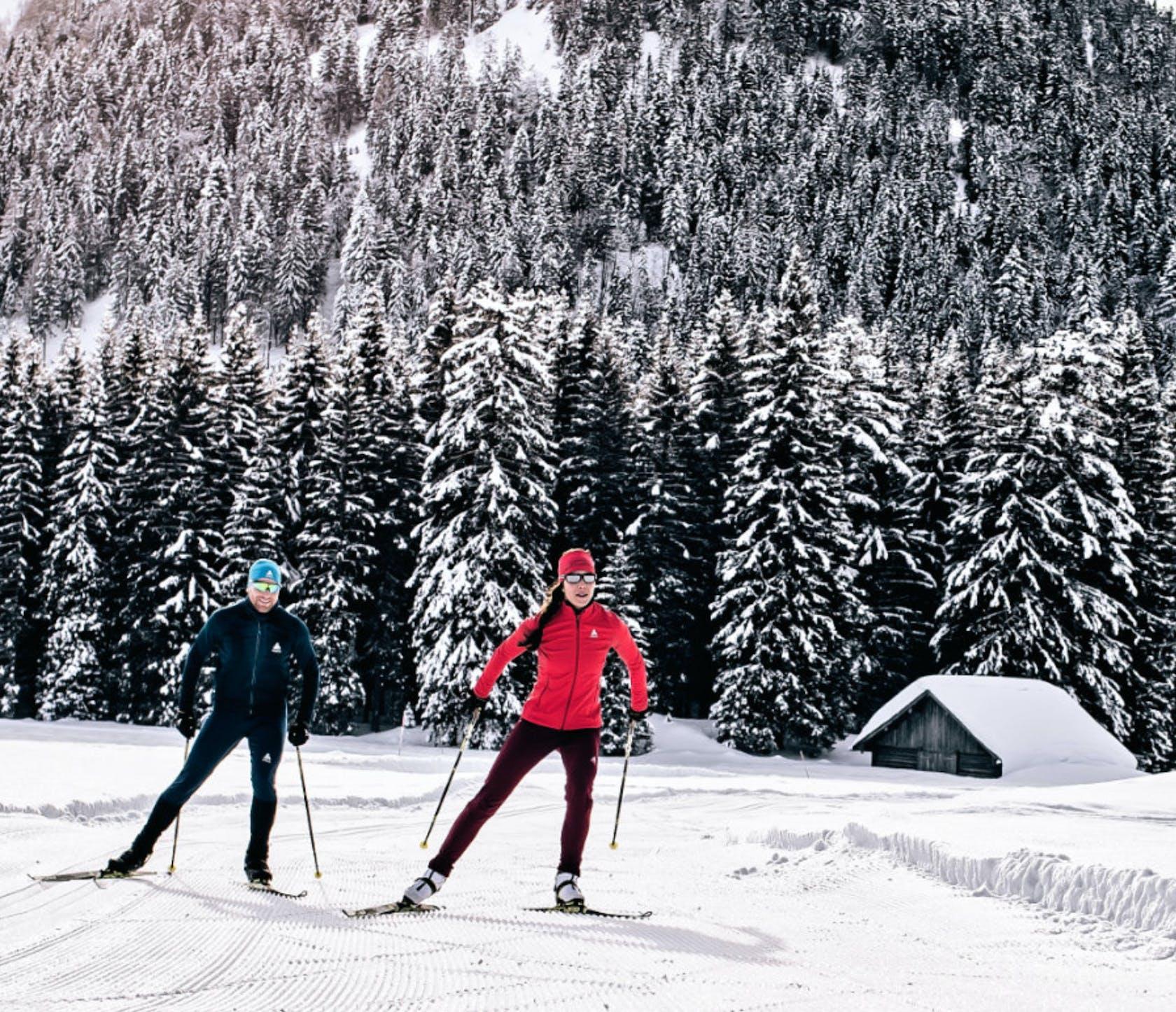 Shop online sci di fondo skating