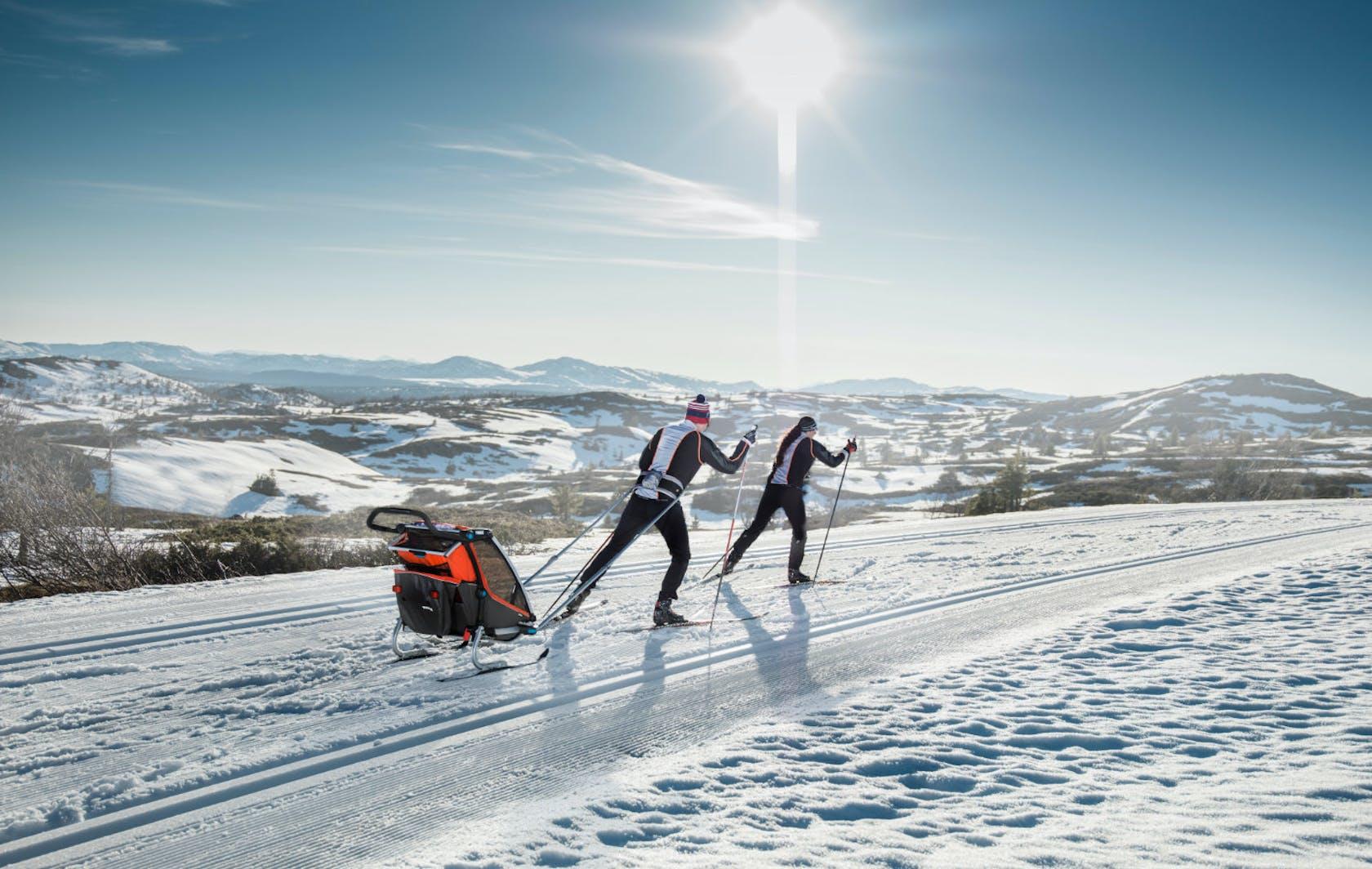 Shop online Thule rimorchi da bici e sci di fondo