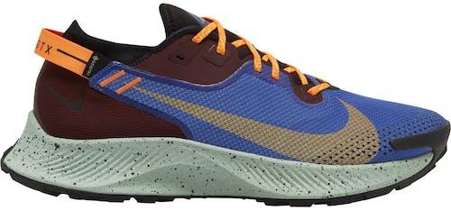Nike Pegasus Trail 2 GORE-TEX - Trailrunningschuh - Herren