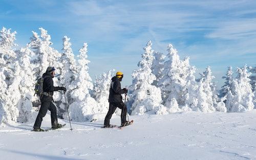 Winterwandern Schneeschuhe