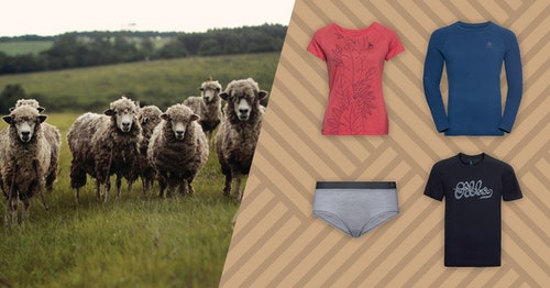 Our Top 4 Merino Wool Clothing for Summer