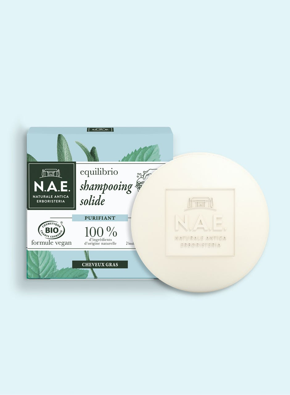 Shampooing Solide Purifiant