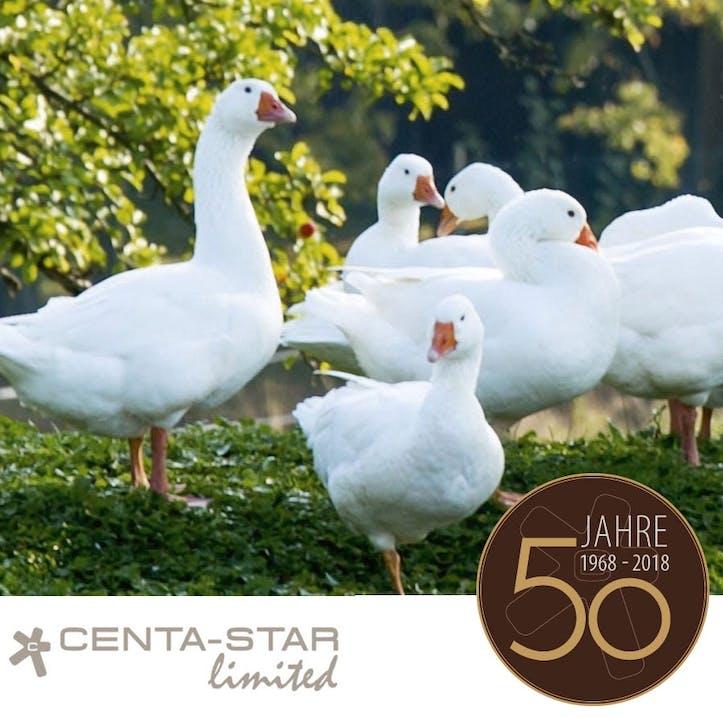 Centa-Star: 50 Jahre Schlaf