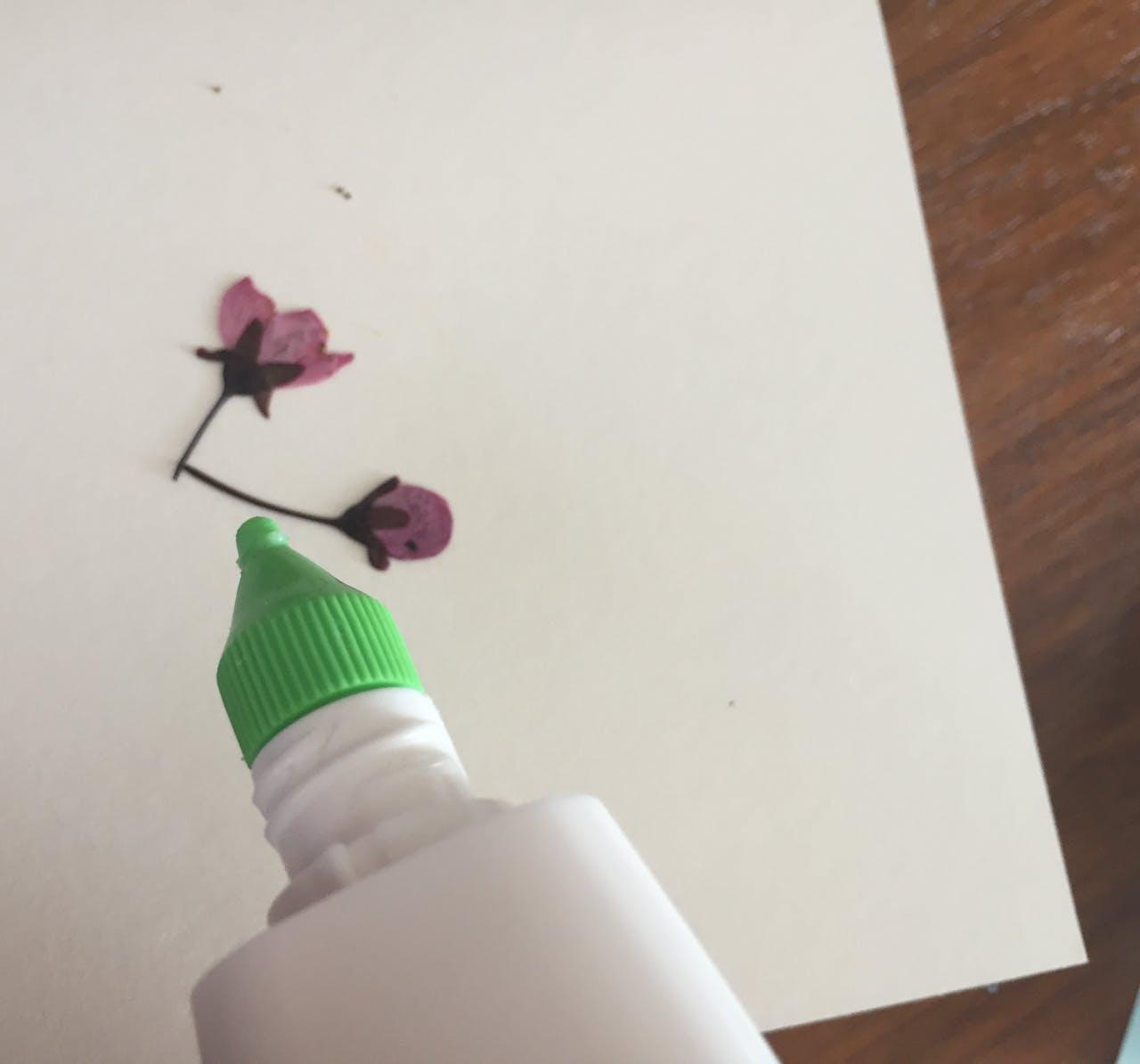 Moduloris machen: Karte mit getrockneten Blüten und Aquarellfarben