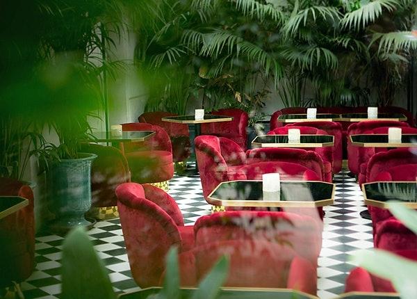 Hotelbar mit roten Samtsesseln und dschungelartigen Grünpflanzen