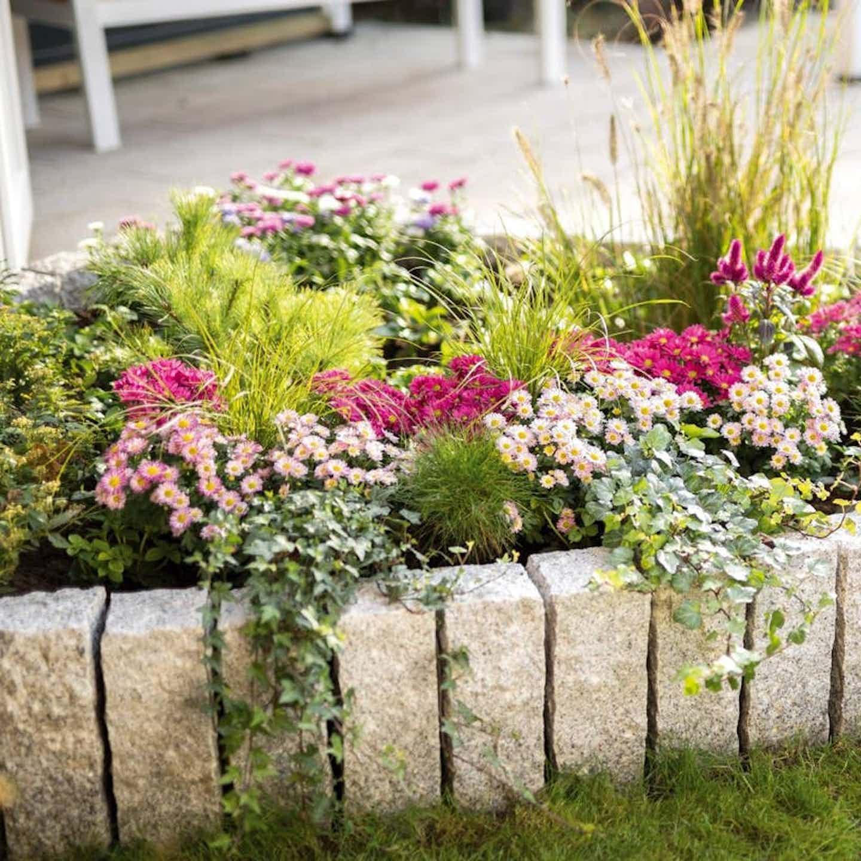 Bewässerung Blumenbeet + Blumenkasten während Urlaub