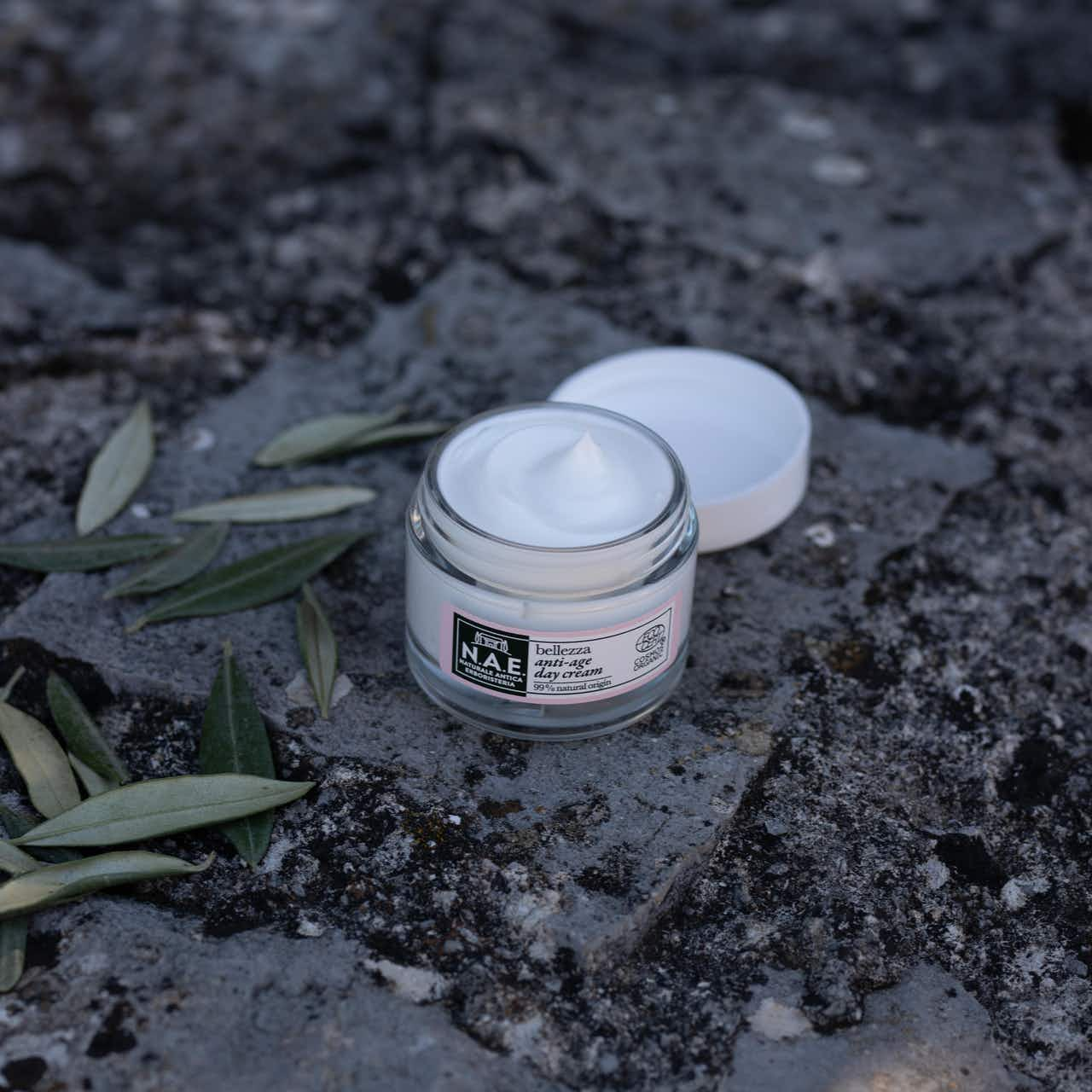 Anti-age Day Cream
