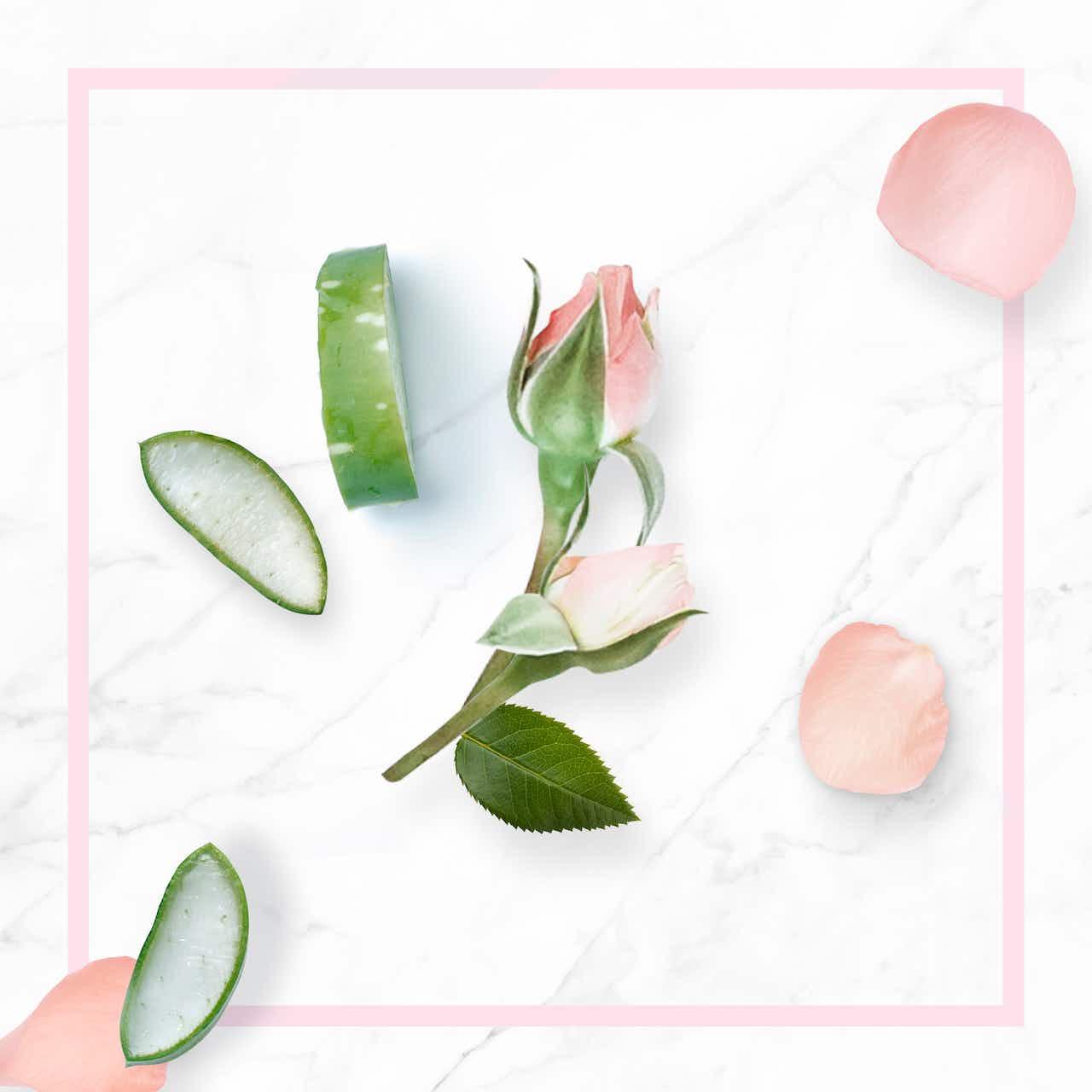 Bio damaszkuszi rózsa és aloe vera