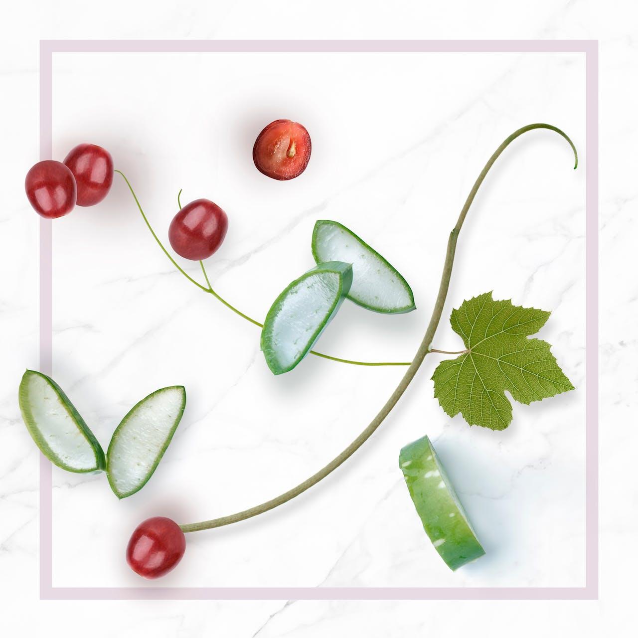 Bio szőlőmagolaj és aloe vera