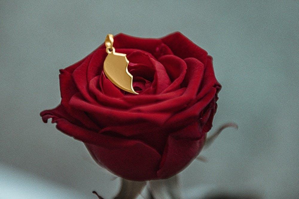 Ce Collier CLEOR est en Argent 925/1000 Bicolore en forme de Coeur