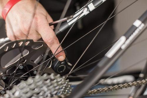 Officina Bike SPORTLER