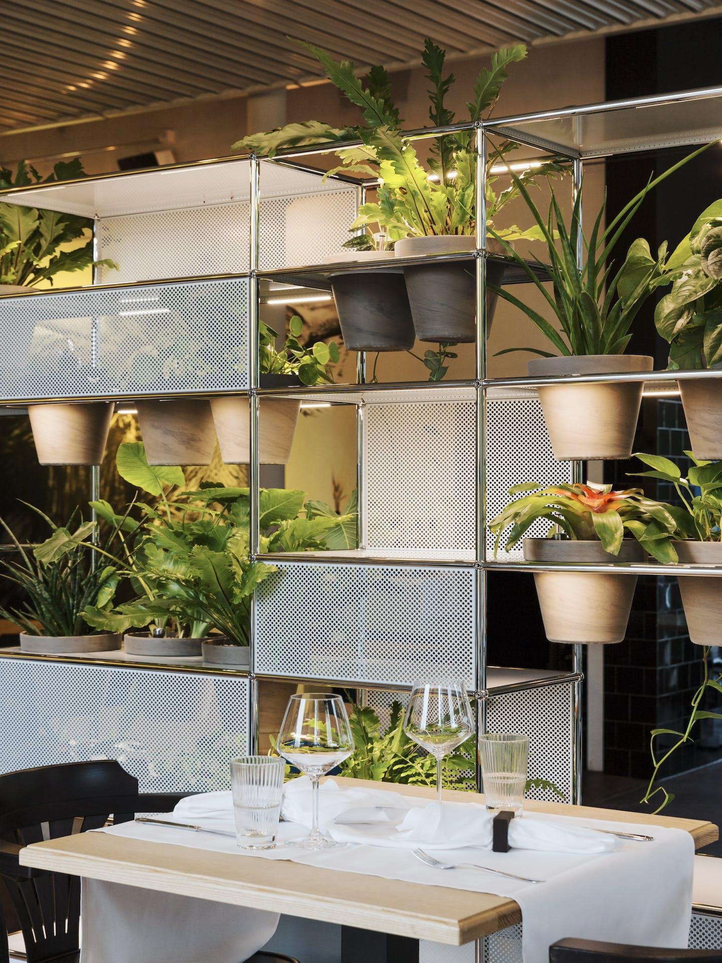 Étagère USM avec plantes vertes