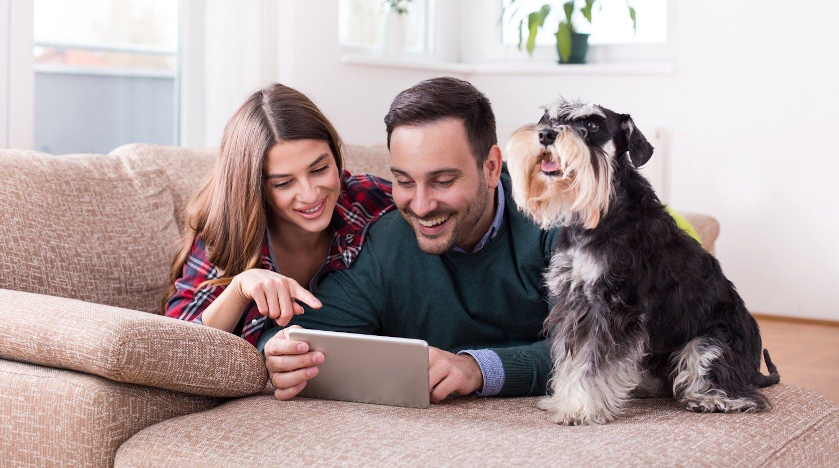 Familie mit Hund liegt auf Couch und shoppt online mit einem Tablet