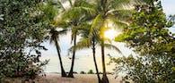 tropischer Strand mit Palmen und Sonne