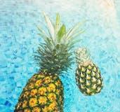 Ananas im Pool