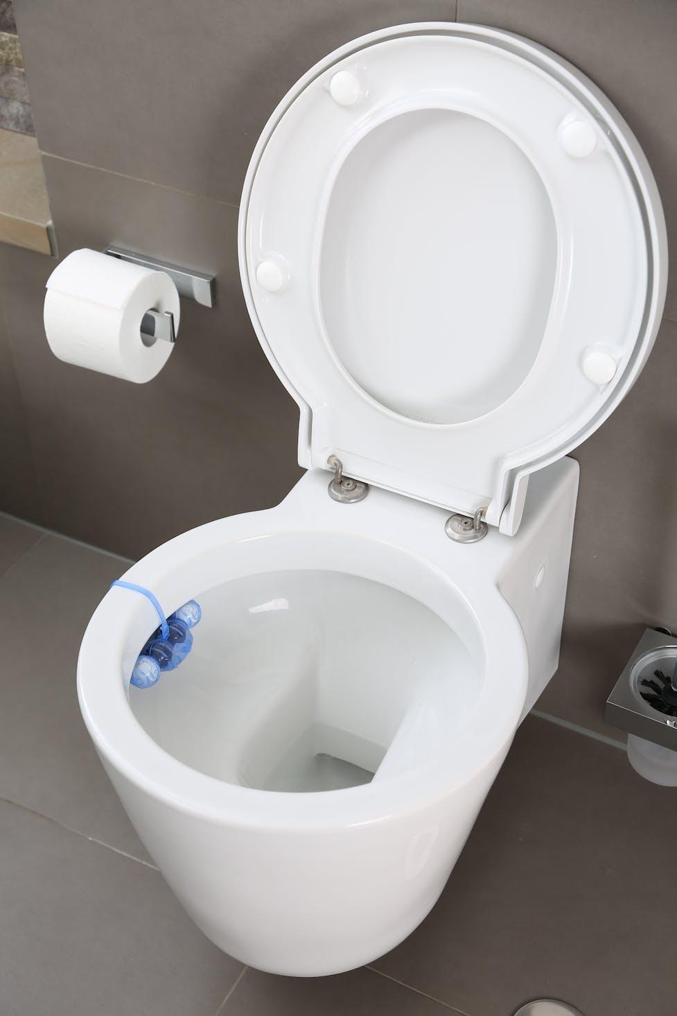 Verstopfte Toilette Was Tun