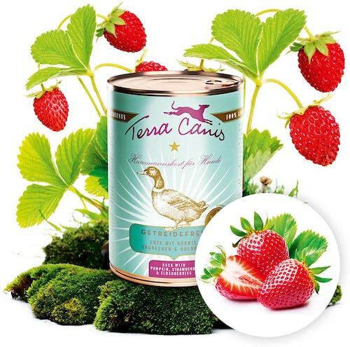 Terra Canis - Nassfutter - Getreidefrei Ente mit Kürbis, Erdbeeren & Holunder