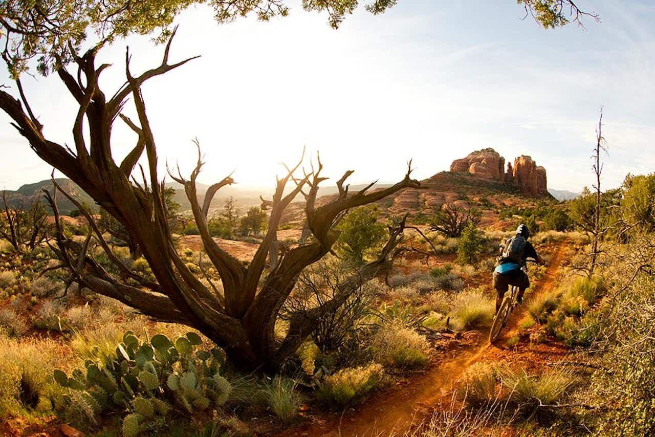 Mountainbiker in den USA