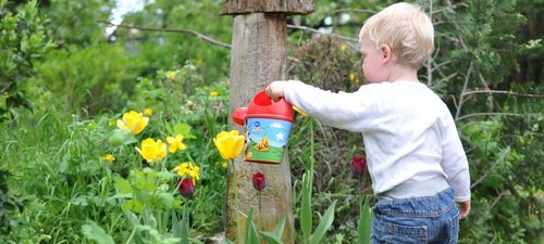 Fun gardening activities with Kids