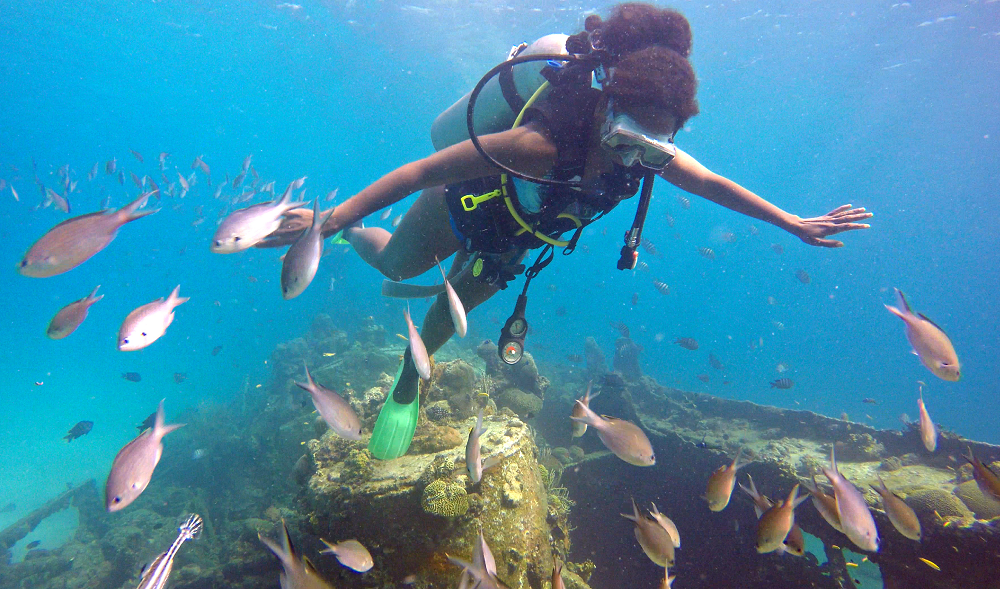 Dive Fest, Barbados, SportScheck, Event, Sport