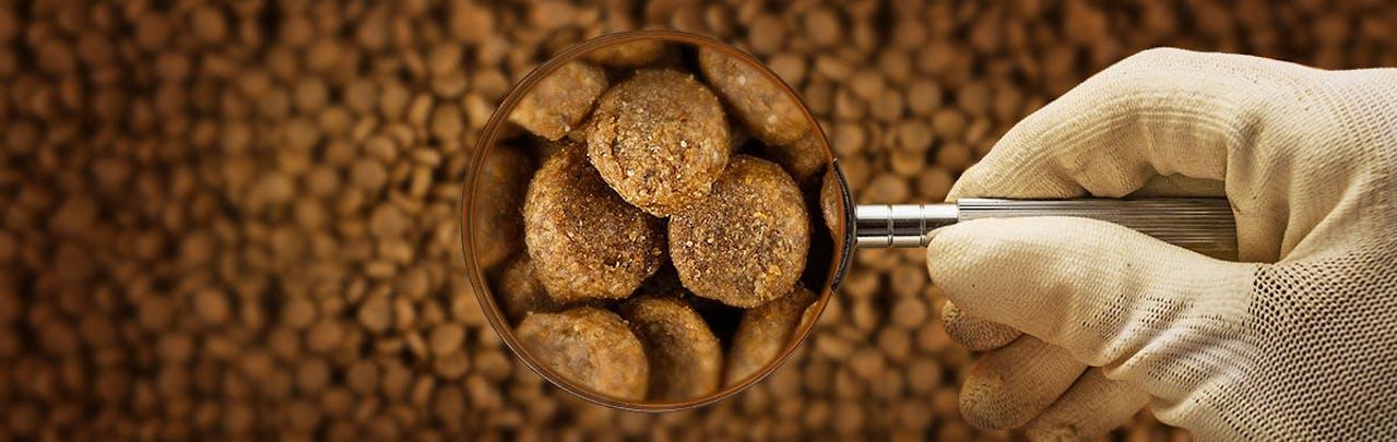 Qualitätskontrolle Trockenfutter mit Lupe
