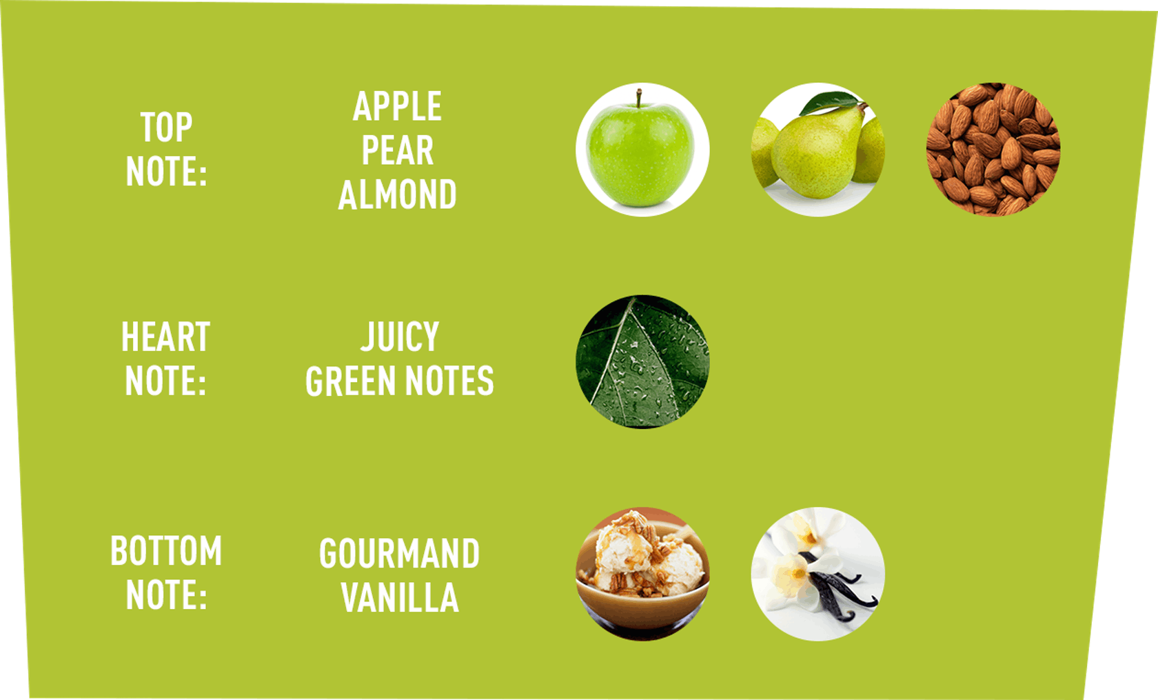 Top Note: Apple, Pear, Almond | Heart Note: Juicy, Green Notes | Bottom Note: Gourmand, Vanilla