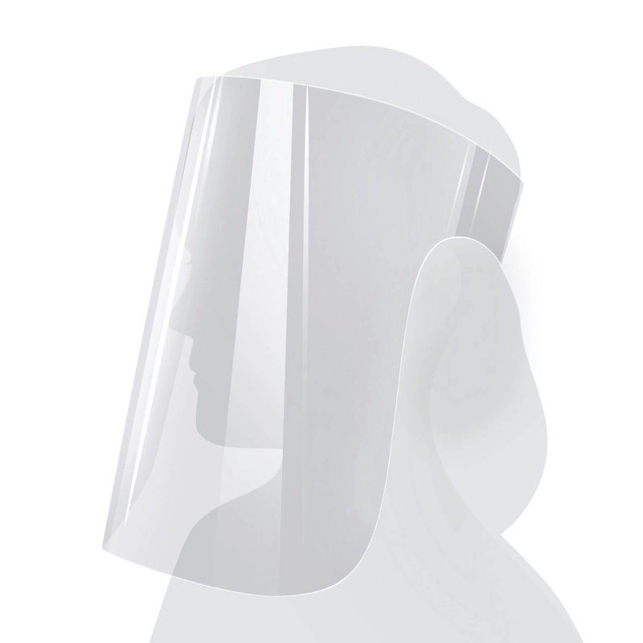 Protection du visage ECONOMY, Var: GS-E
