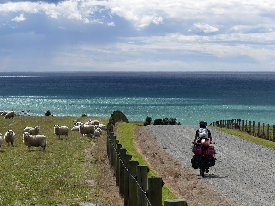 Fahrradreise in Neuseeland
