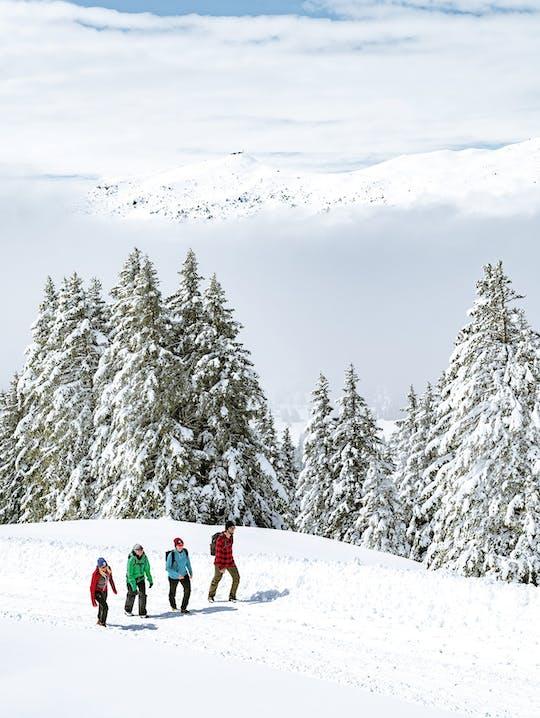 Winterwandern Arosa Lenzerheide