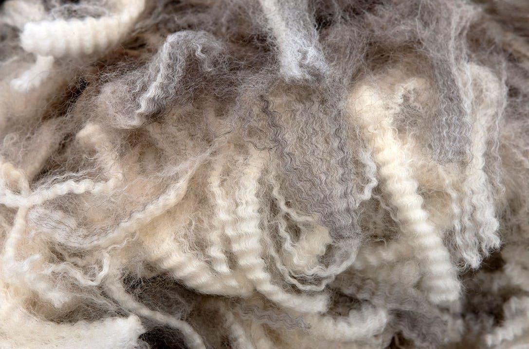Swisswool Wollfasern