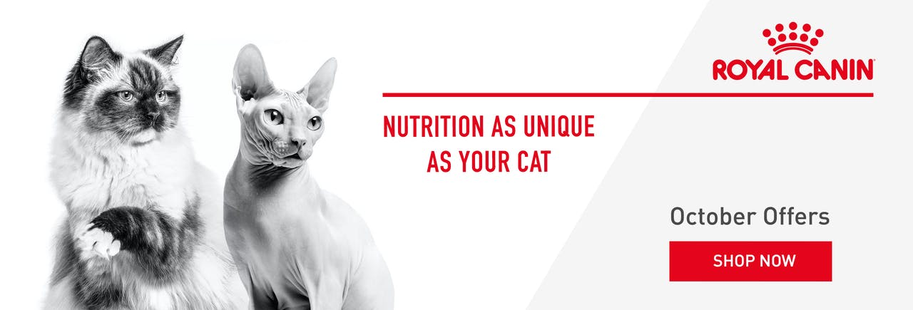 Royal Canin Cat Food Banner