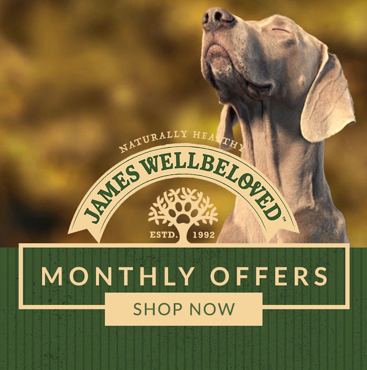 James Wellbeloved Dog Food banner