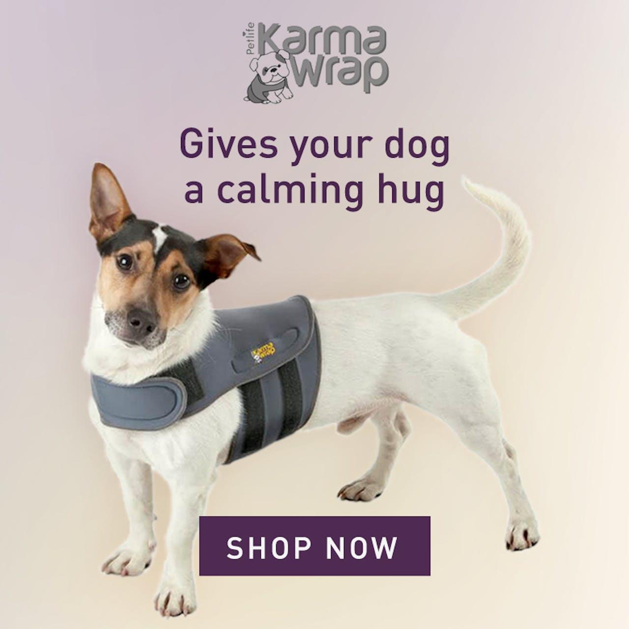 https://www.petstop.ie/petlife-karmawrap-dog-anxiety-wrap