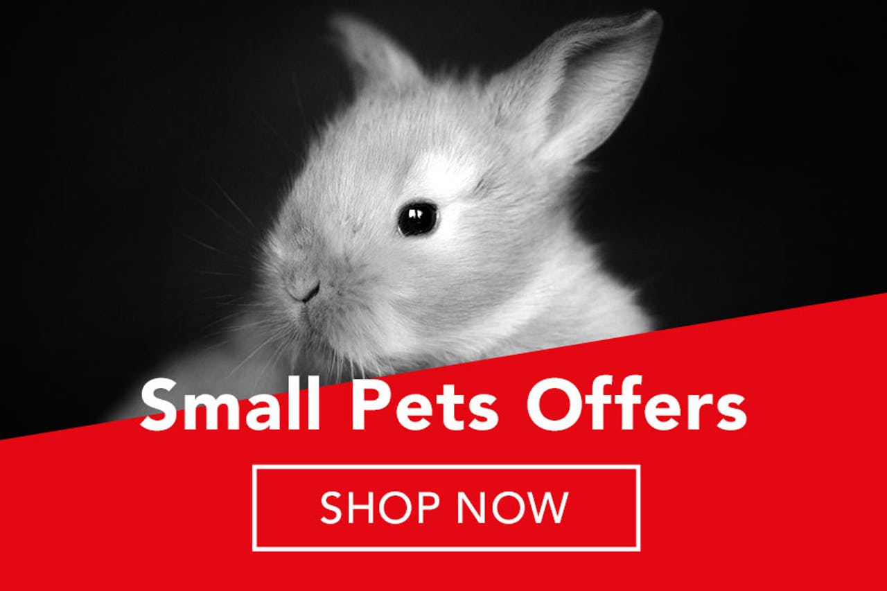 Petstop Black Friday Sale - Small Animal Products