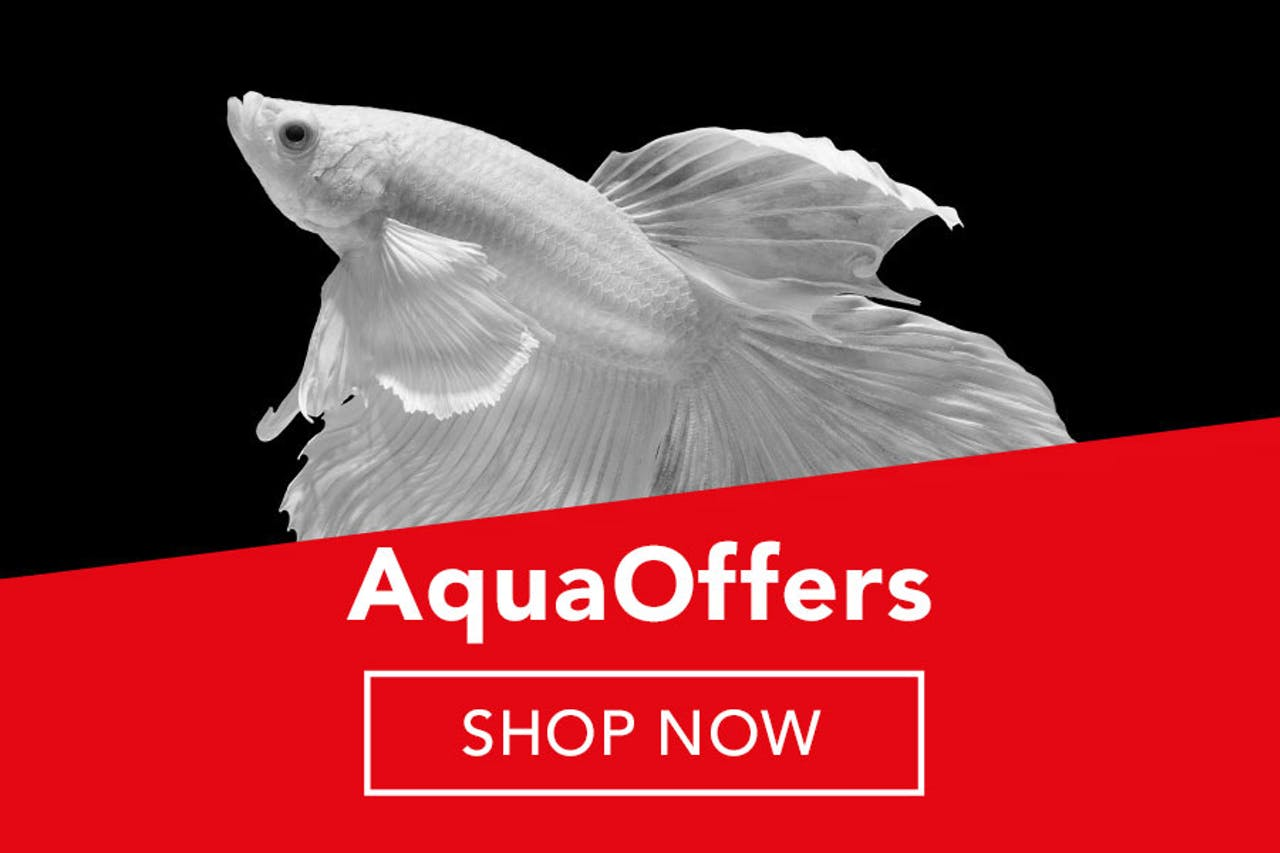 Petstop Black Friday Sale - Aqua Products
