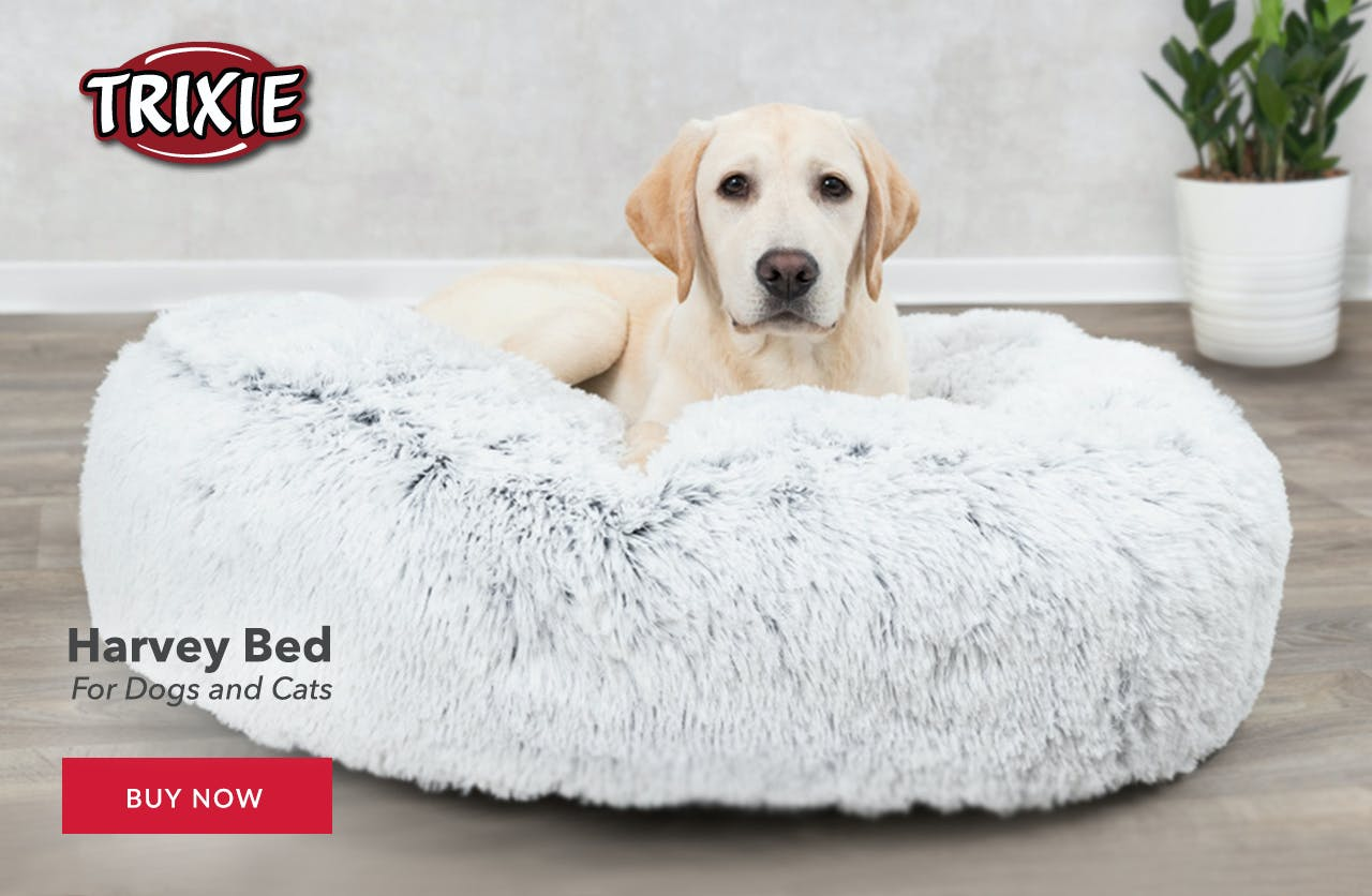 Harvey Dog Beds