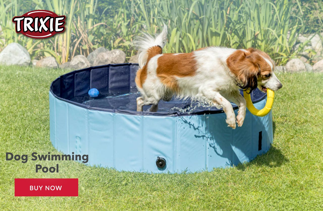 Trixie Swimming Pool for pets
