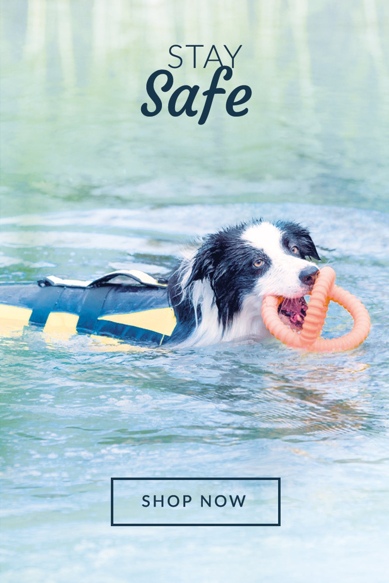 Petstop - Home Page | Stay Safe