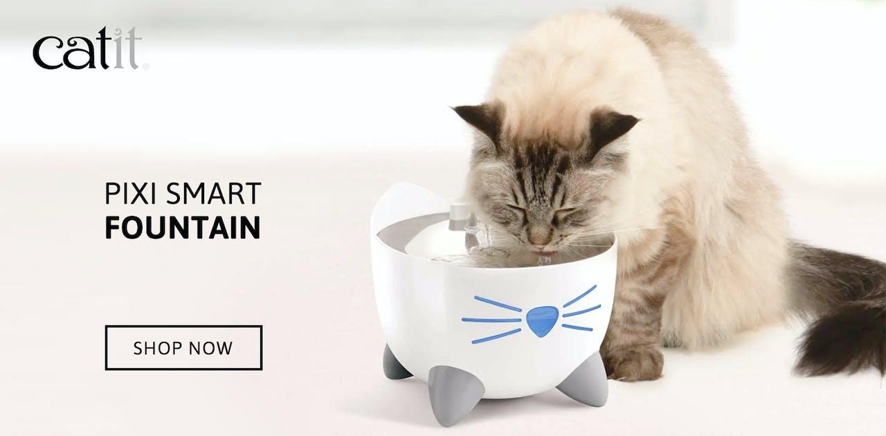 Catit Pixi Cat water fountain