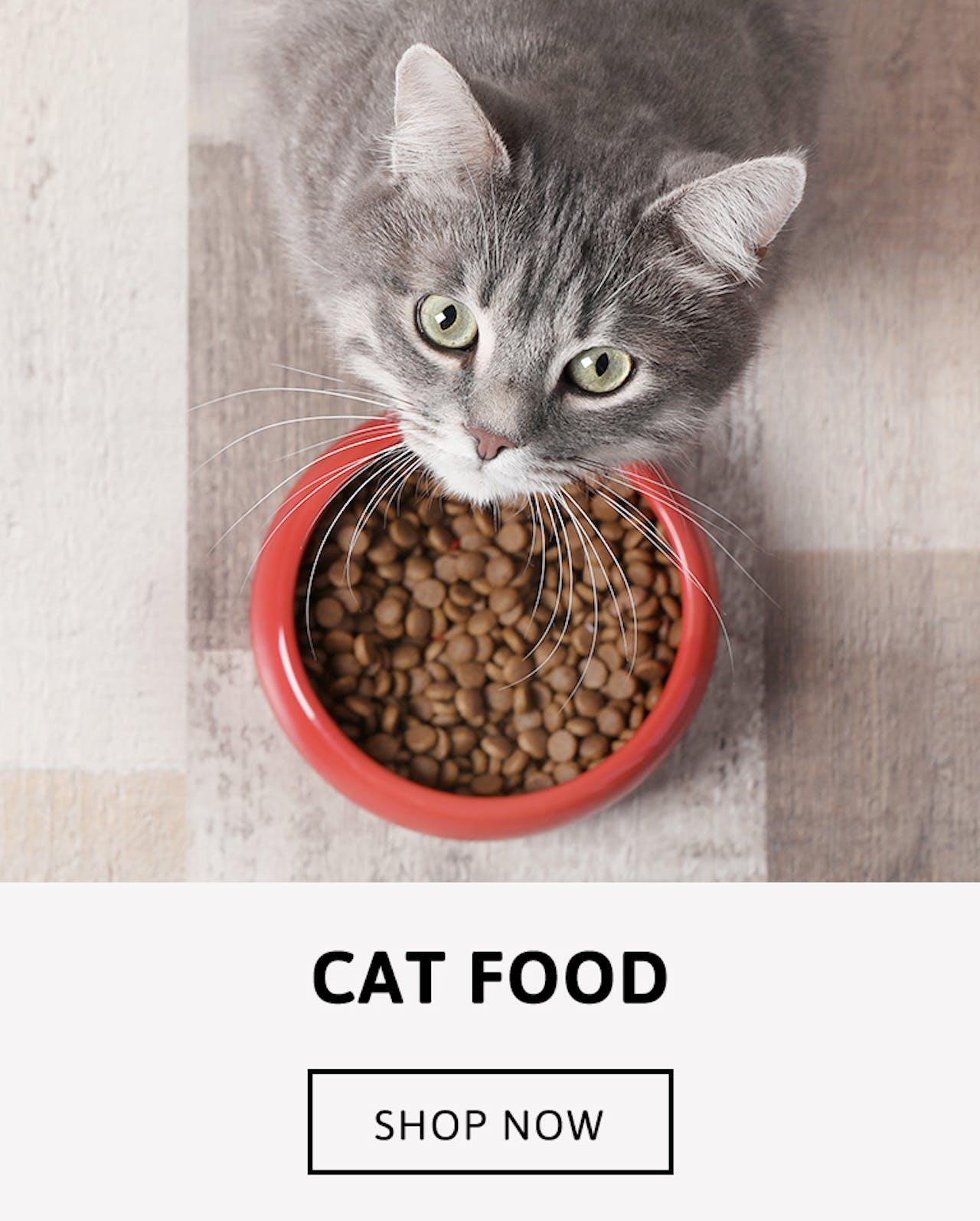 Cat Food - Shop Now