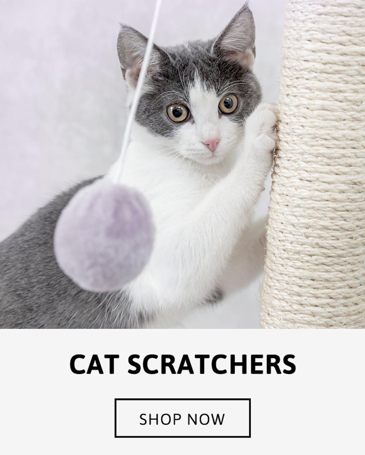 Cat Scratching Posts -Shop now