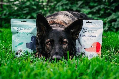 Natural Fish Treats for Dogs | Petstop - Irish Pet Experts