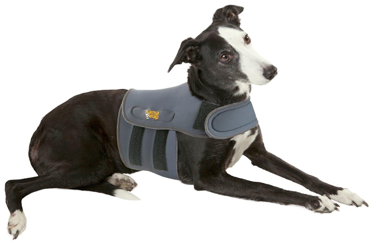 Petlife KarmaWrap - Dog Anxiety Wrap