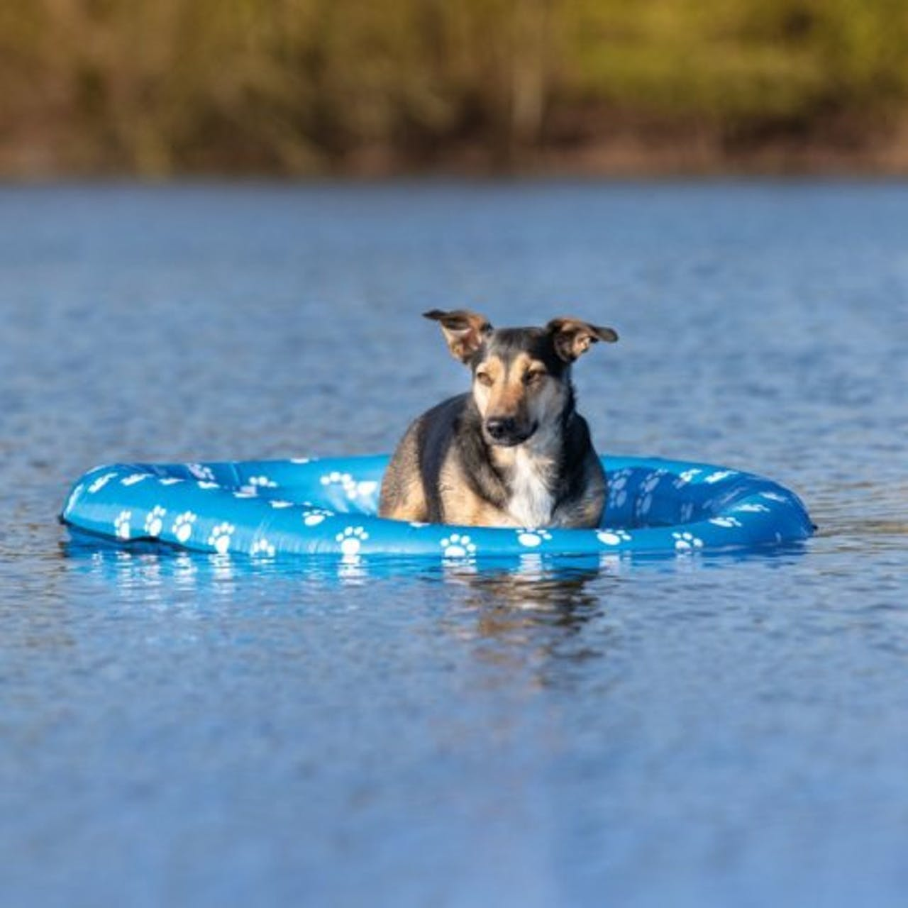 Trixie Inflatable Dinghy
