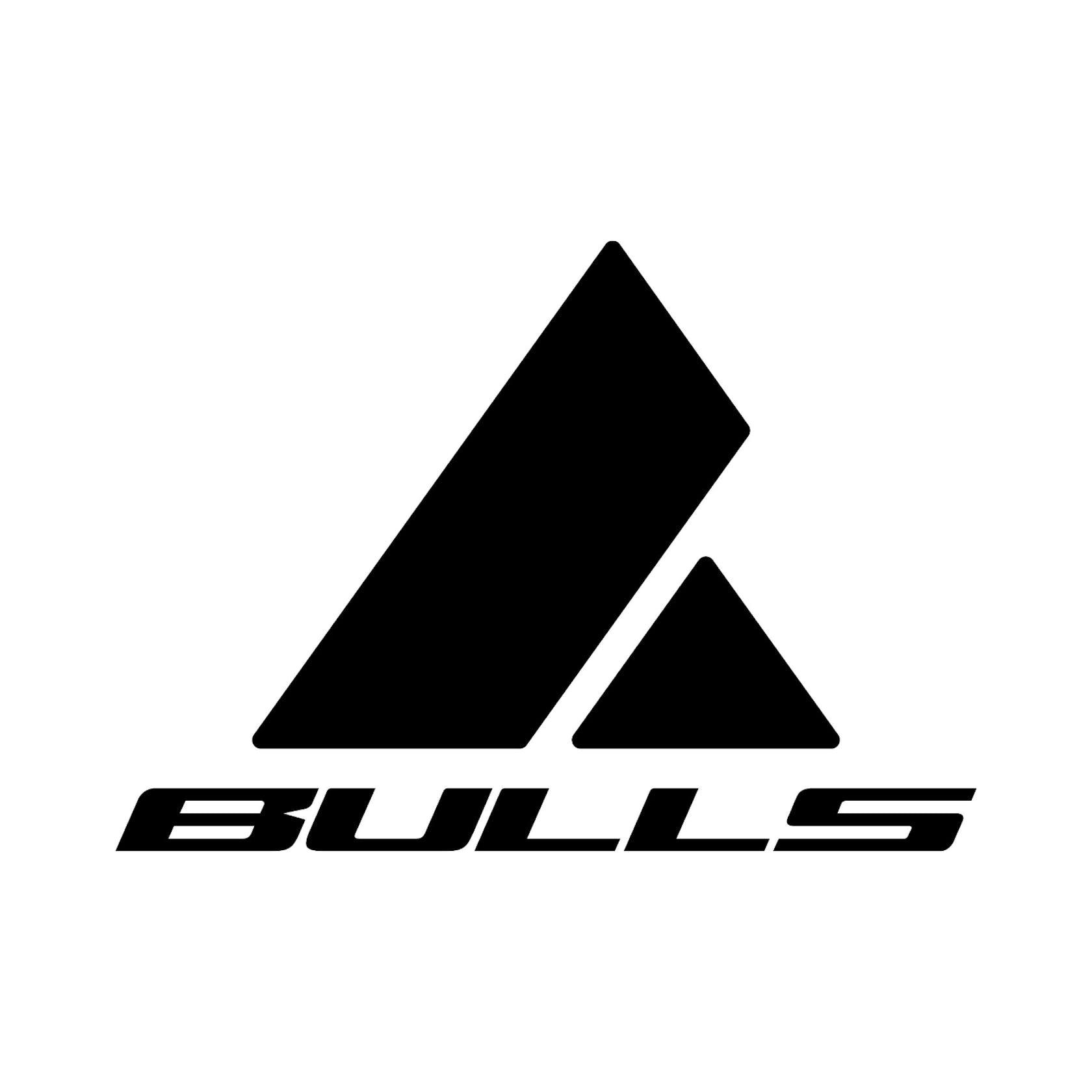 Bulls shop online