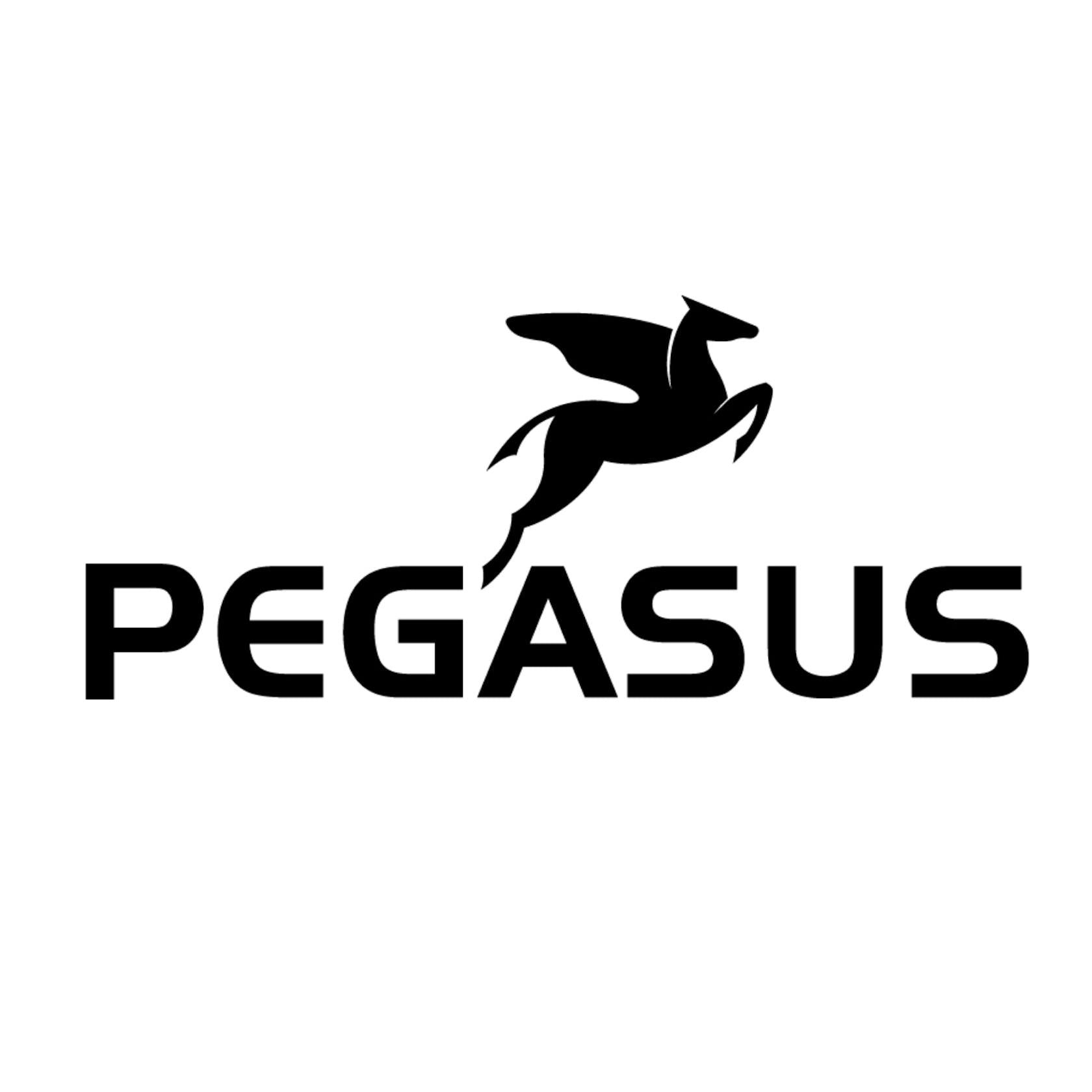 Pegasus shop online