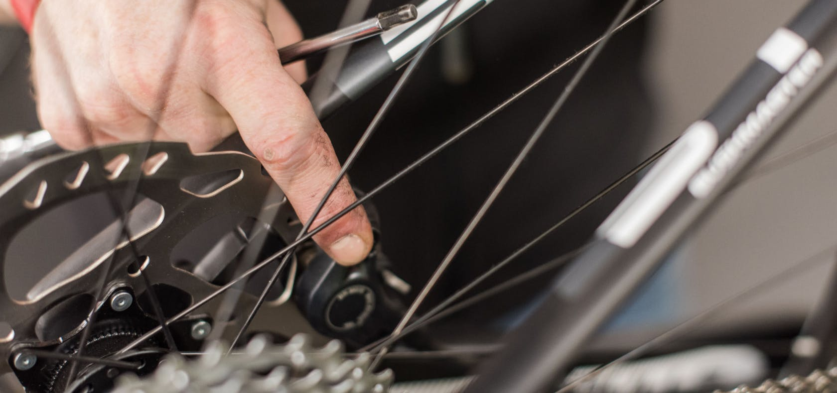 ingranaggi bici